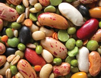 Пищевые волокна в бобовых